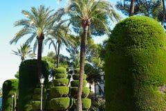 Park in Cadiz Royalty Free Stock Photography