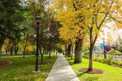 Park at Carson City Stock Photos