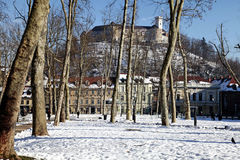 Park and castle in Ljubljana, Slovenia Stock Images