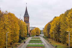 Park and Cathedral - a symbol of Kaliningrad Royalty Free Stock Images