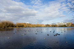 Park in Center of Malmo Sweden. Beautiful landscape of lake and city view at park in center of Malmo, Sweden , with blue sky and clouds. Winter season Stock Photos