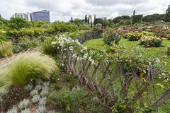 Park Cervantes,rose garden,Barcelona. Park Cervantes,rose garden, Barcelona. Spain royalty free stock image