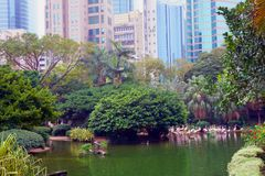 Park in China mit Flamingo Lizenzfreies Stockfoto