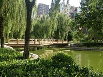 Park in China. Park in one of the Beijing compounds Royalty Free Stock Image