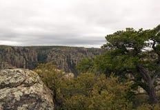 The park of Chiricahua - Arizona - the United States Royalty Free Stock Photography