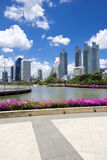 Park in the city. Stock Image