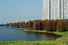 Park in the city. It is a park (with a lake) in the city, it is in ShenZhen of China Royalty Free Stock Photo