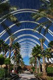 Park in the City of Arts and Sciences royalty free stock photos
