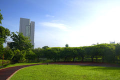 Park in city Stock Image