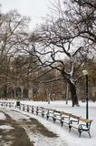 Park in the city covered with snow stock images