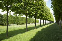 Park of the city,Europe France Royalty Free Stock Photography
