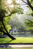 Park in city. Take in a park bangkok royalty free stock photo
