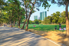 Park in city Royalty Free Stock Photography