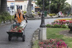 Park Cleaner in Napier, New Zealand. Royalty Free Stock Photography