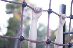 Park climbing ropes frame Royalty Free Stock Images