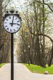 Park clock on spring alley background Stock Photos