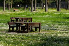 Park. A park close to florence Stock Image