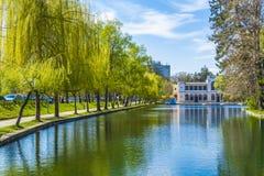 Park in Cluj-Napoca Stock Image