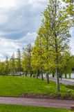 Park in Cluj-Napoca Royalty Free Stock Photos