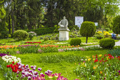 Park in Cluj-Napoca. The principle alee in the central park of Cluj-Napoca, Romania Royalty Free Stock Photo