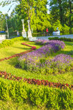 Park in Cluj-Napoca Royalty Free Stock Image