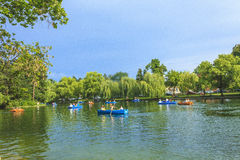 Park in Cluj-Napoca Stock Photography