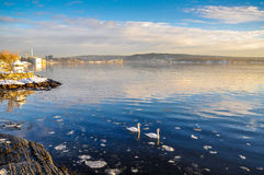 Park and coast near Fram Museum in Oslo in winter.  Stock Photo