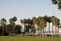 Park in Coronado Island Royalty Free Stock Photos