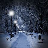 Park covered with snow at night. Winter park with red benches covered with snow in the evening Stock Photo