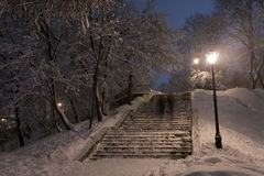 Park covered with snow at night. Royalty Free Stock Images