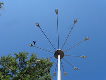 A park. Crow flying in the sky against a background of a lamppost in the park of the city Belgorod Stock Photography