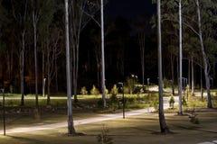 Park at dark Stock Image