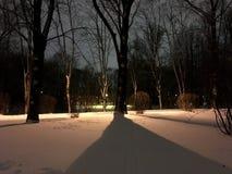 Park in de donkere dalende schaduw van een boom Royalty-vrije Stock Afbeeldingen