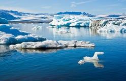 Park, de gletsjer en de lagune van Skaftafell het Nationale. Royalty-vrije Stock Afbeelding