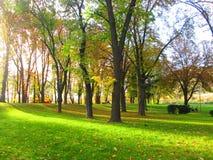Park in de Herfst Royalty-vrije Stock Afbeeldingen