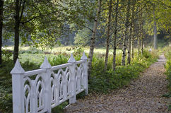 Park in de Herfst Stock Fotografie