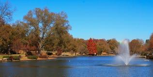 Park in de herfst 1 Stock Foto