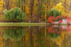Park, de herfst, aard, panorama, landschap, tuin, kleurrijke boom Stock Foto