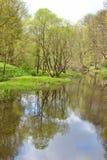 Park in de lente Royalty-vrije Stock Fotografie