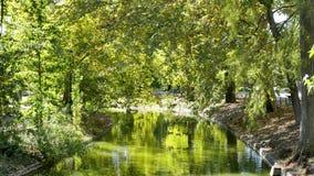 Park in de stad van Bordeaux stock videobeelden