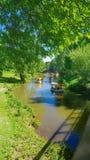 Park in de Zomer stock foto