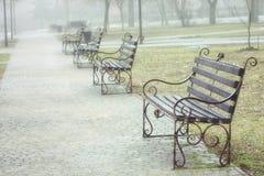 Park der B?nke im Fr?hjahr Das Wetter ist nebelig und regnerisch lizenzfreie stockfotos