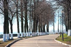 Park der Gasse im Frühjahr morgens. Stockbild