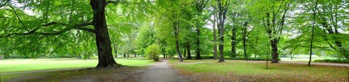 Park in der Herbstzeit stockfotografie