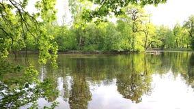 Park der Kultur und des Restes auf Elagin-Insel in St Petersburg, Russland stock footage