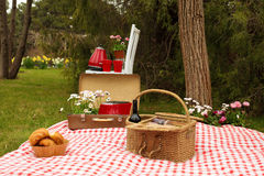 Park des Picknicks im Frühjahr Stockfotos