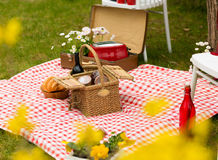Park des Picknicks im Frühjahr Lizenzfreie Stockfotos