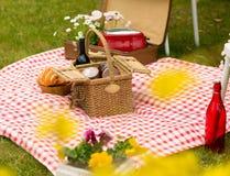 Park des Picknicks im Frühjahr Lizenzfreie Stockbilder
