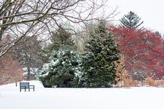 Park des verschneiten Winters Lizenzfreies Stockbild