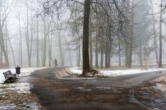 Park des verschneiten Winters im Nebel Lizenzfreie Stockfotografie